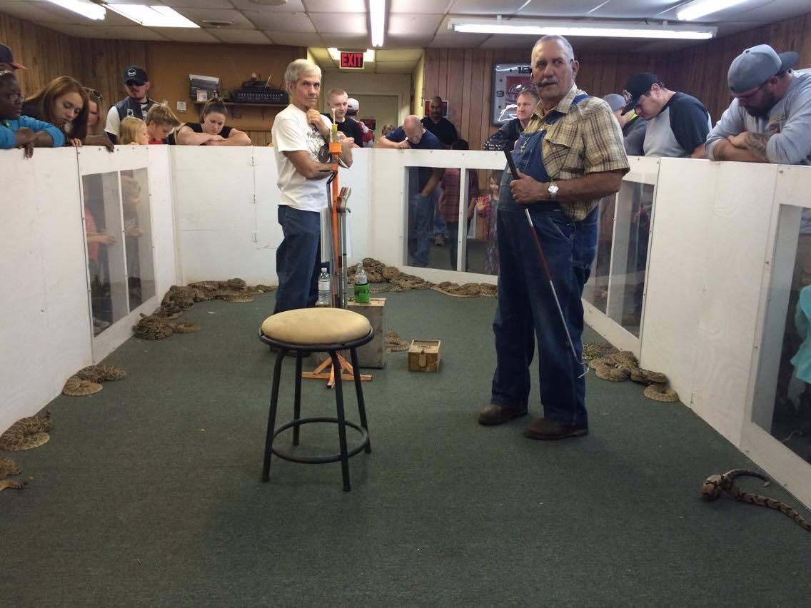 Фестиваль гремучей змеи